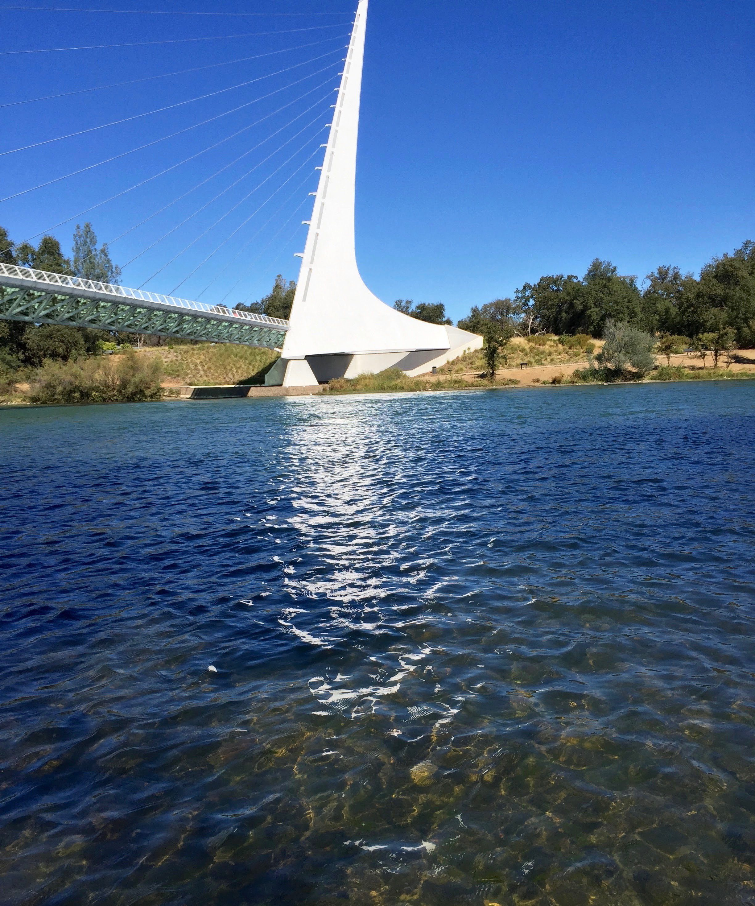 Sun Dial Bridge, Redding