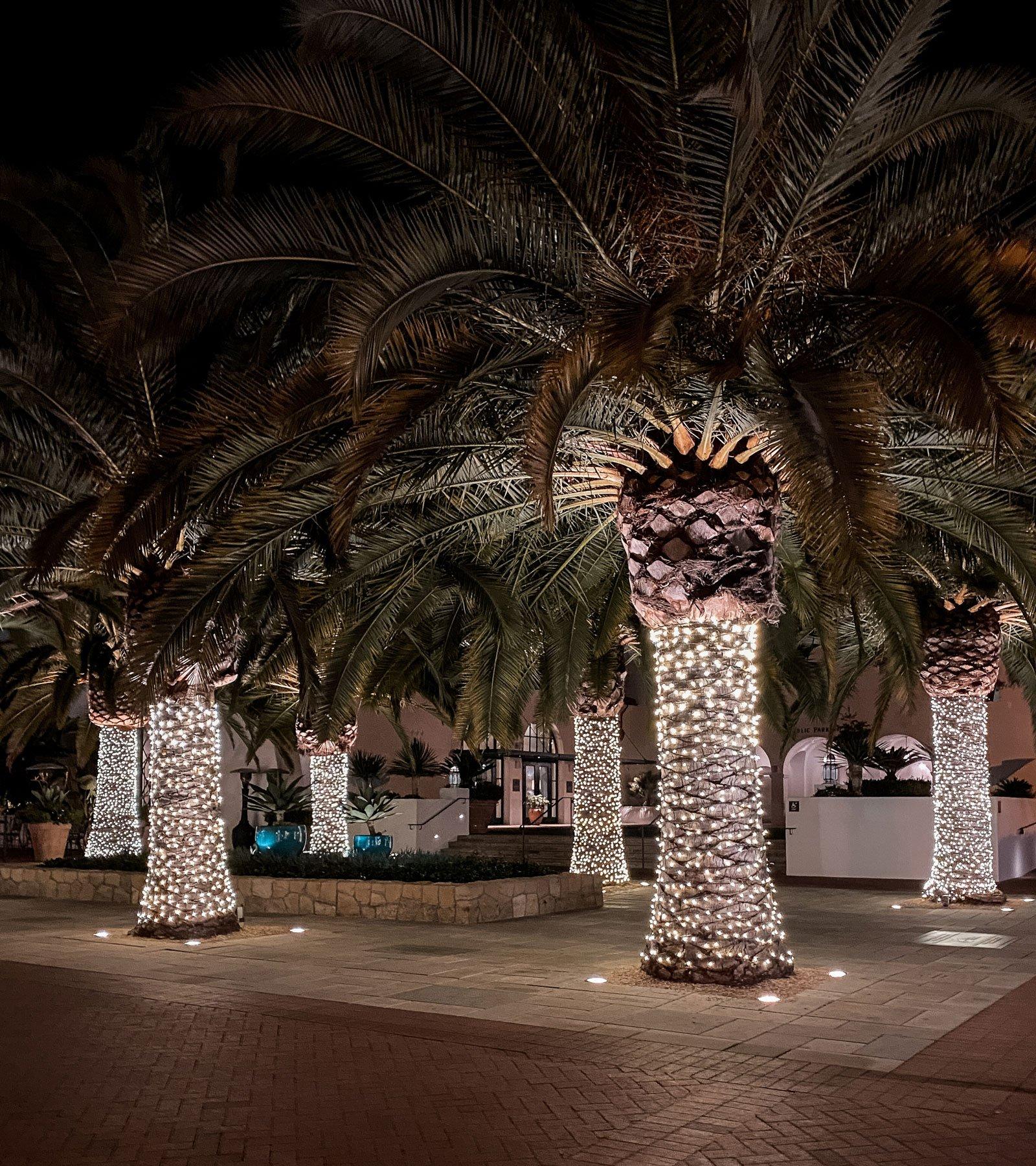 Christmas lighting on State Street Santa Barbara