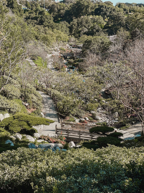 Balboa Park Japanese Gardens San Diego