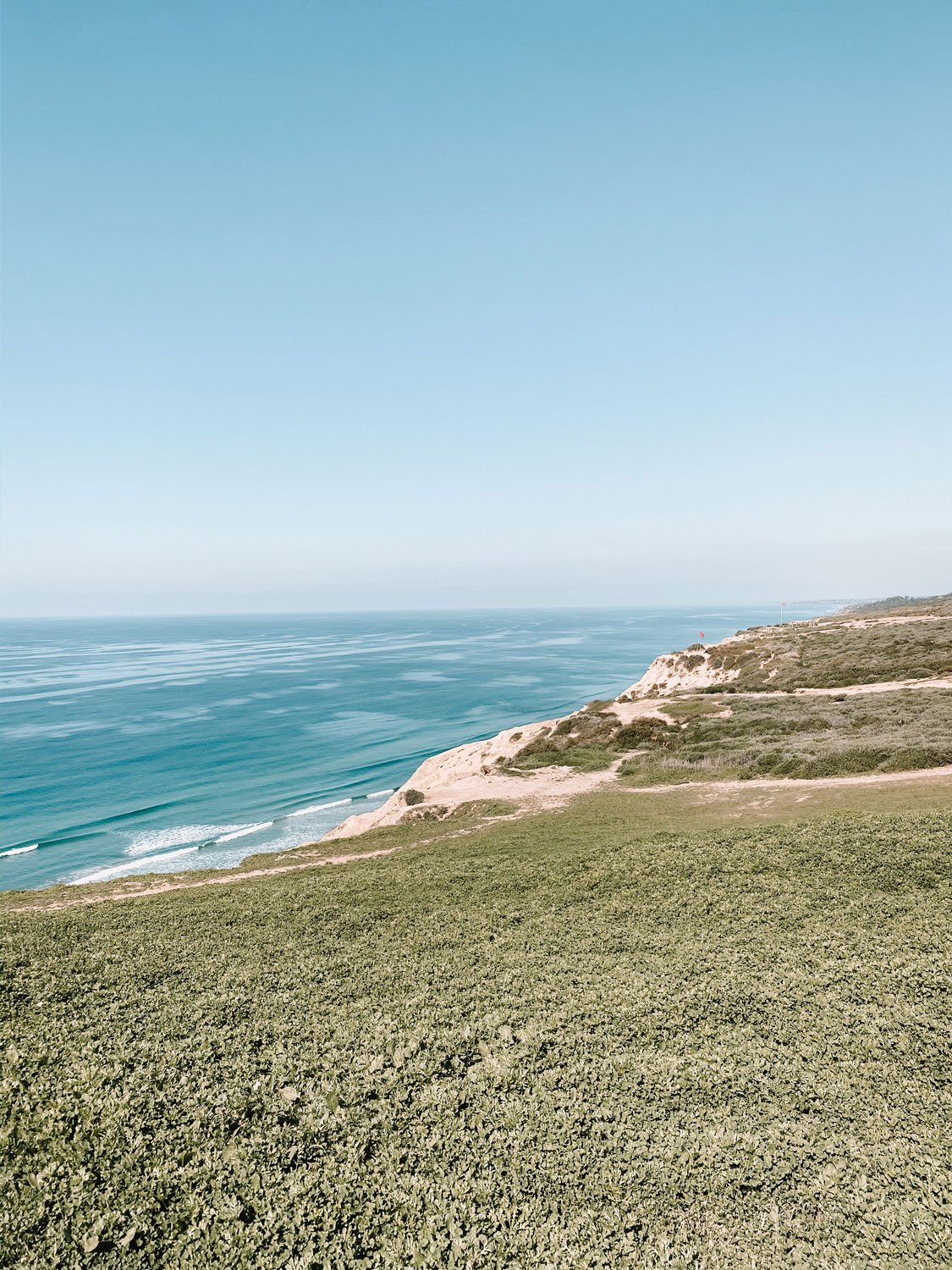 Torrey Pines natural preserve ocean view