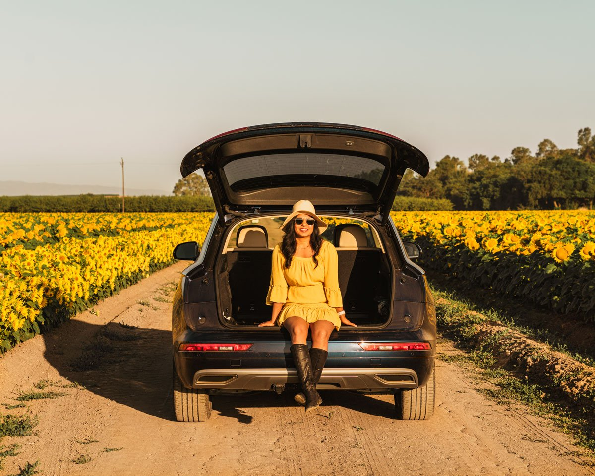 Car in between sunflower fields, California