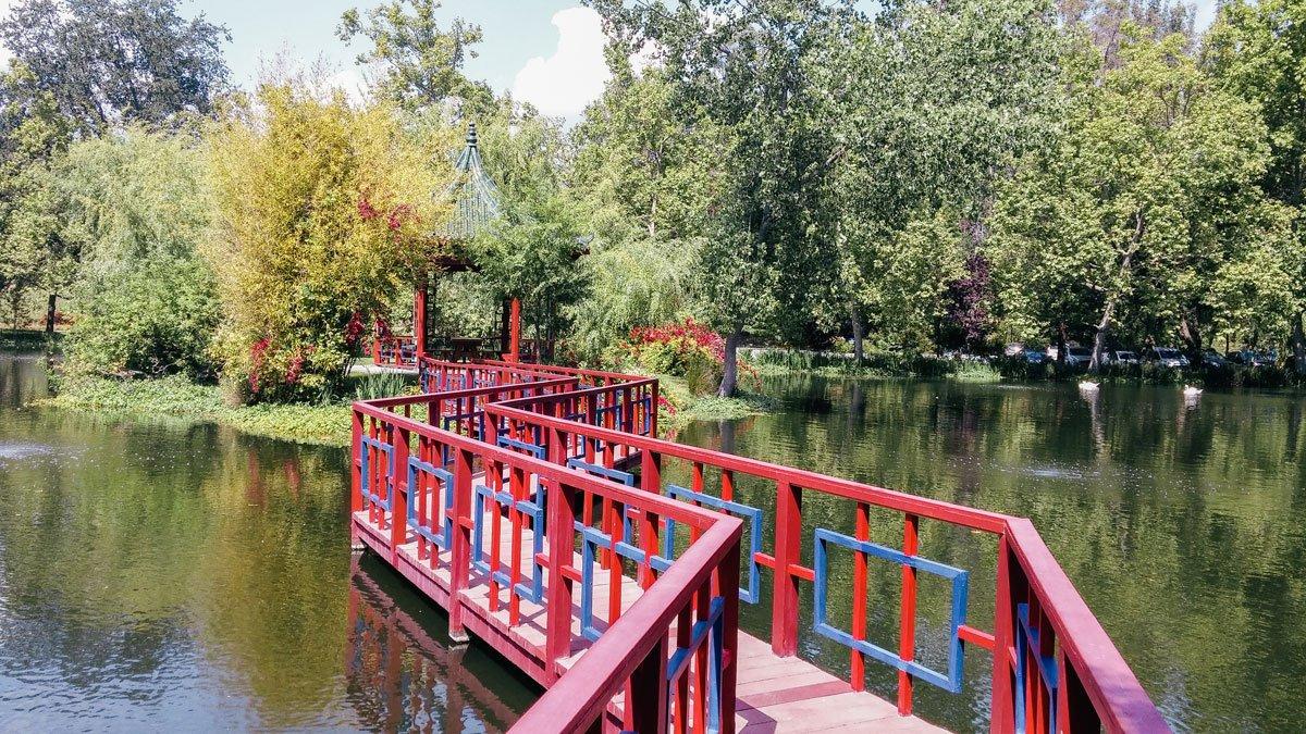 Chateau Montelena Japanese garden