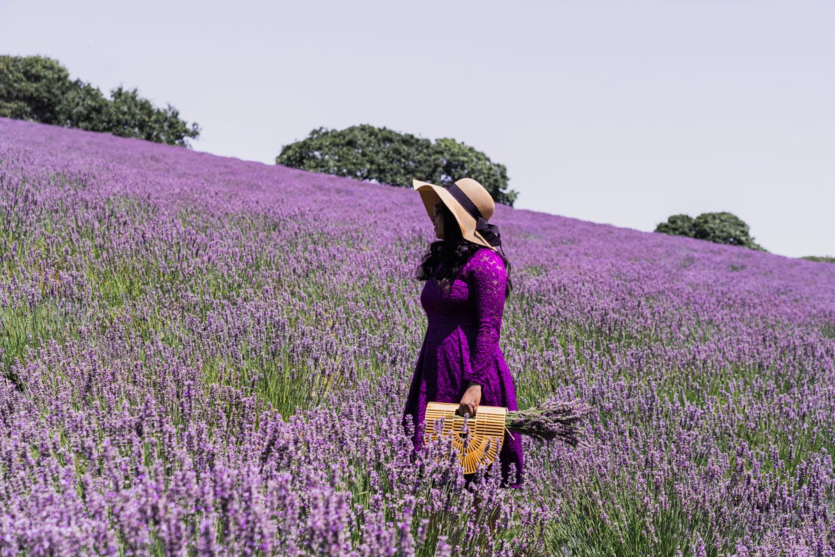 Woman frolicking in lavender farm, California