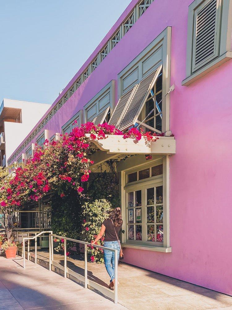 Bougainvillea covered pink building in Santa Monica, CA