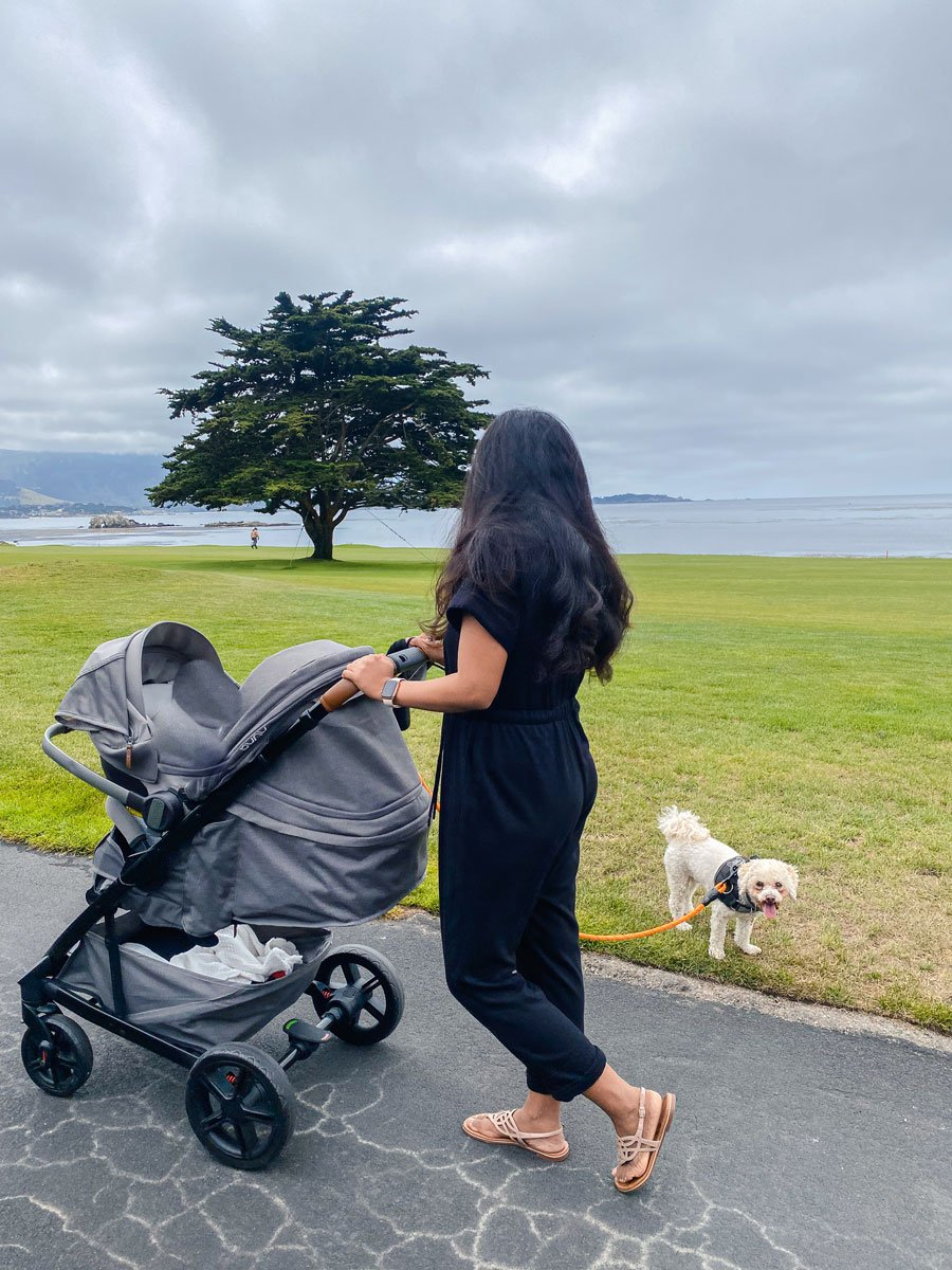 Woman with stroller and a dog