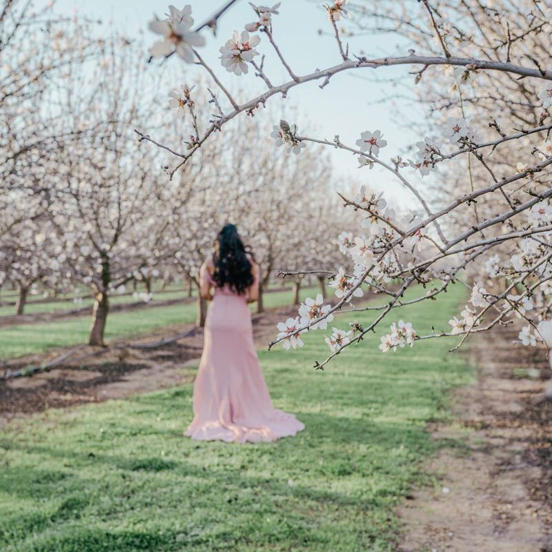 Woman in almond orchard Woodland